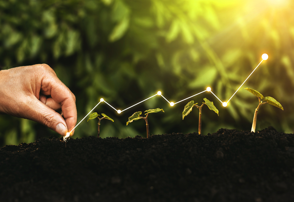 Illustration of financial line graph over plants growing