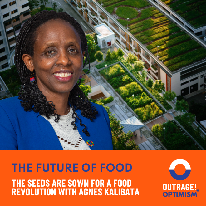 The Seeds Are Sown for a Food Revolution with Agnes Kalibata cover art