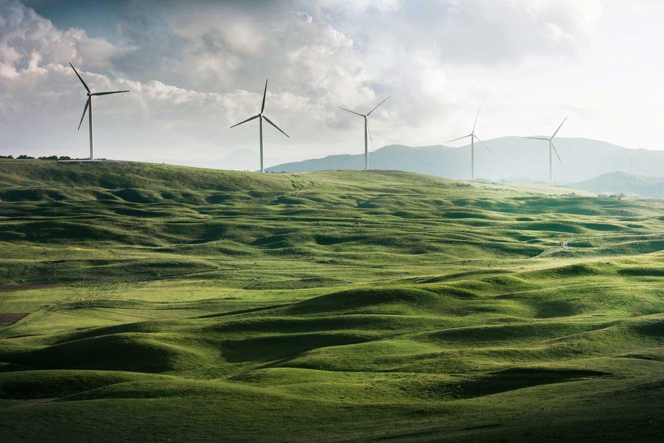 Wind turbines over green field