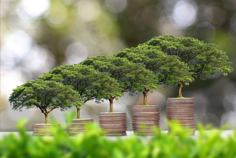 Trees growing on stacks of coins