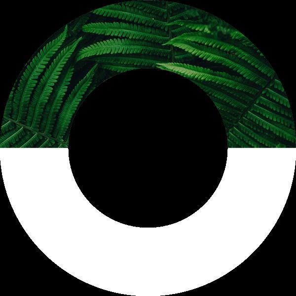 Global Optimism logomark